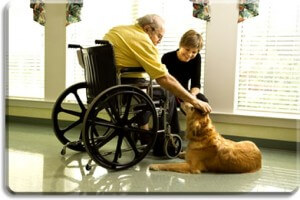why-home-based-care